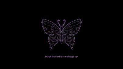 Black Butterflies and Déja Vu - The Maine